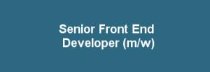 equeo-stellenanzeige-front-end-developer-grafik